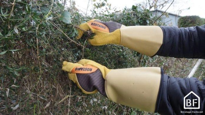 gants pour ronces et épines