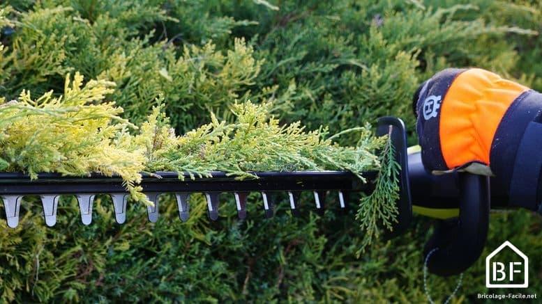 collecteur de déchets HedgeSweep