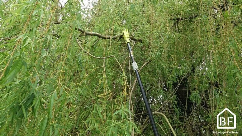 tronconneuse élageuse Ryobi OPP 1920 en action sur un arbre